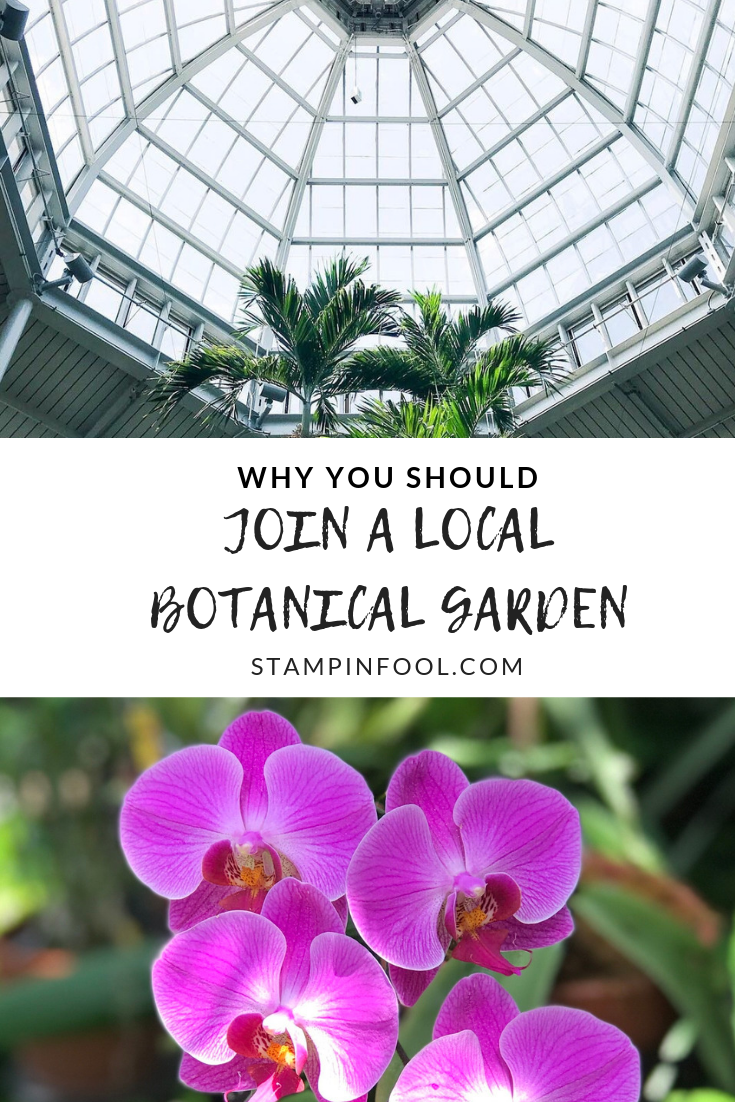 Why You Should Join a Local Botanical Garden
