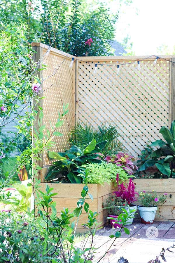 DIY Privacy Planter Screen Outdoor Project