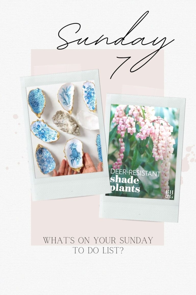 The Sunday 7 Spring Favs