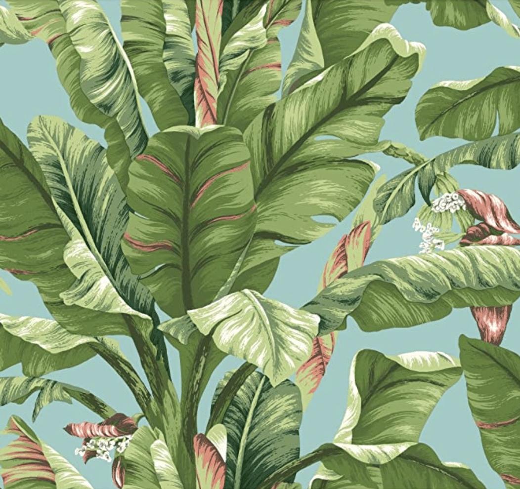 York Wallpaper Banana Leaf Palm print wallpaper